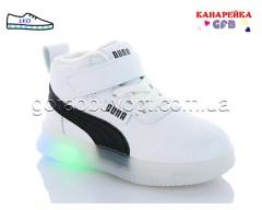 Кроссовки GFB K1103-3